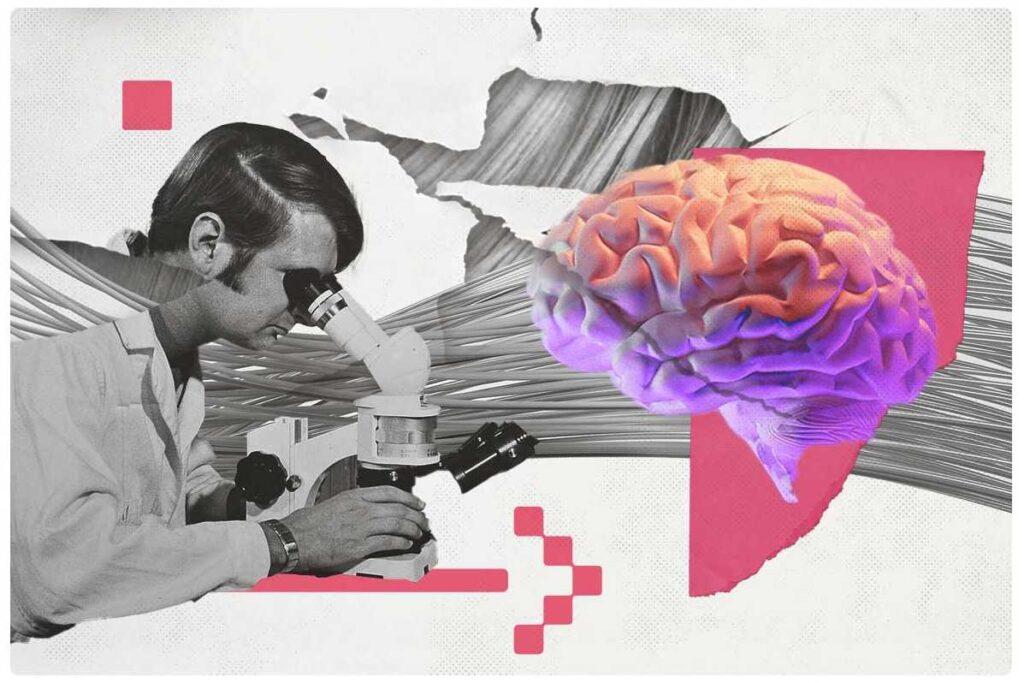 Sondas neurais